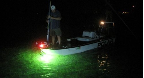 Amarine made 12v 180 led 900 lumens green lure bait finder for Night fishing lights for boats