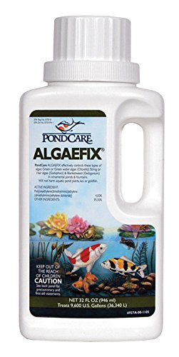api-pondcare-algaefix-controls-water-algae-pond-treatment-cleaner-32oz-bottle