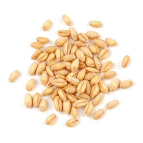 Wheat Berries, Soft White* - 10 Lb Bag / Box Each