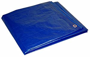 Dry Top Drytop 16208 16-Feet by 20-Feet Cut Size Poly Tarp, Blue, 6-Pack