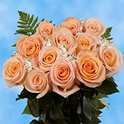 1 Dozen Fresh Cut Peach Roses & Fillers | Amazingly Radiant! | Fresh Flowers Express Delivery | Perfect for Birthdays, Anniversary or any occasion.