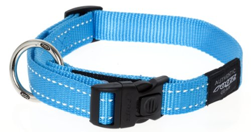 Reflective Fanbelt Dog Collar &#8211; Turquoise, Large