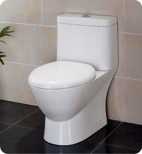 Serena Dual Flush Toilet in White at Sears.com