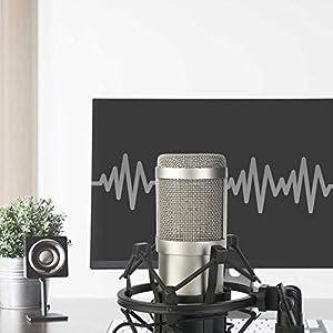 ZINGYOU Desktop Microphone Set ZY-801 Condenser Microphone Professional Studio Cardioid PC Mic Bundle for Studio Recording and Broadcasting (Sunrise