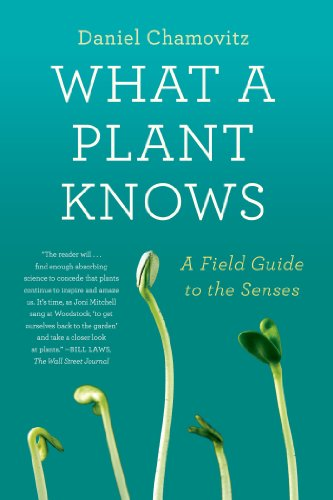 Download What a Plant Knows: A Field Guide to the Senses