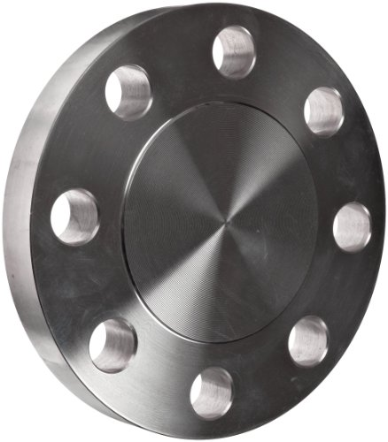 Stainless Steel 304 304L Pipe Fitting Flange Blind Class 300