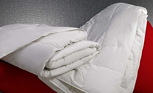 w-hotels-king-lightweight-down-blanket