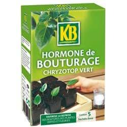 kb jardin hormone de bouturage kb 5x5g kbbout n jardin. Black Bedroom Furniture Sets. Home Design Ideas