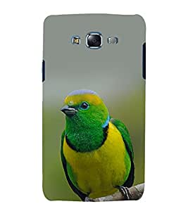 printtech Nature Bird Colored Back Case Cover for Samsung Galaxy J5 / Samsung Galaxy J5 J500F