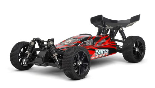 Buggy Run 2 front-356506