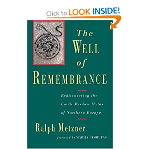 Amazon.com: Well of Remembrance: Rediscovering the Earth Wisdom ...
