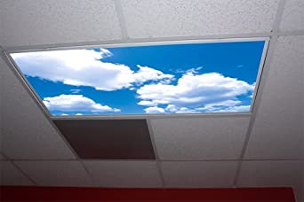 Cumulus Ii Skypanels Fluorescent Light Diffuser
