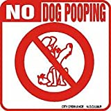 No Dog Pooping Dog Sign
