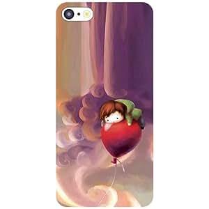Apple iPhone 5C Back Cover - Parachute Designer Cases