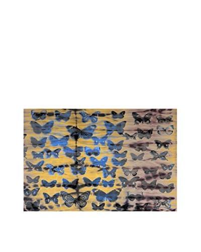 Parvez Taj Moth Colors Canvas Wall Art