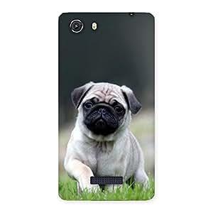 Impressive Pug Dog Grass Multicolor Back Case Cover for Micromax Unite 3