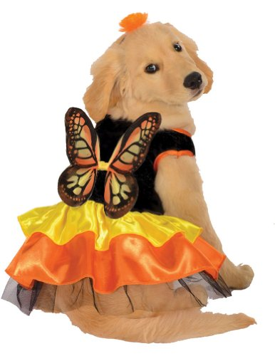 Small - Cat & Dog Costume Butterfly Small