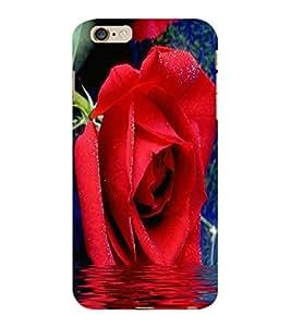 ColourCraft Beautiful Rose Design Back Case Cover for APPLE IPHONE 6S PLUS