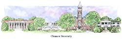 Clemson University - Collegiate Sculptured Ornament