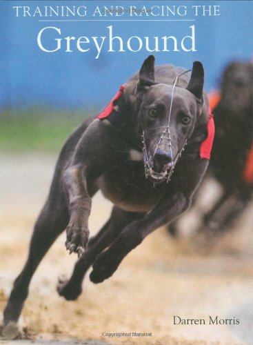 training-and-racing-the-greyhound