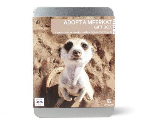 Gift Republic: Adopt A Meerkat Gift Box
