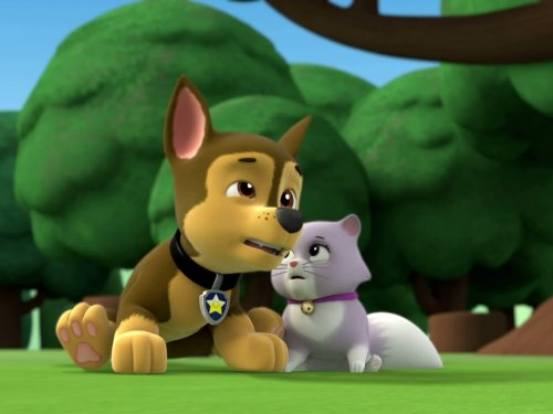 Pups and the Kitty-tastrophe/Pups Save The Train (Free Kids Shows compare prices)