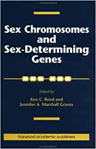 Sex chromosome - definition of sex chromosome by