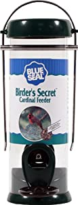Droll yankees BS-CP8G Blue Seal Birders Secret Cardinal Feeder 8 in.