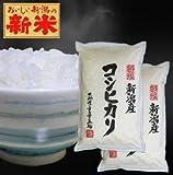 新潟県産(産地直送米) 白米 コシヒカリ 10kg(5kg×2袋) 平成24年度産