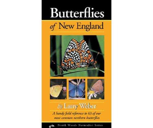 Adventure Publications Butterflies New England Field Guide
