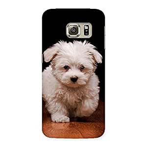 Special Cute Walking Dog Back Case Cover for Samsung Galaxy S6 Edge Plus