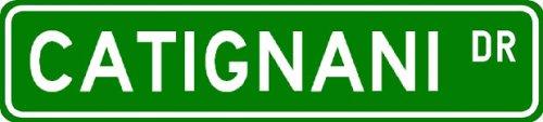 CATIGNANI Street Sign ~ Personalized Family Lastname Sign ~ Gameroom, Basement, Garage Sign Novelty** ALUMINUM METAL - Buy CATIGNANI Street Sign ~ Personalized Family Lastname Sign ~ Gameroom, Basement, Garage Sign Novelty** ALUMINUM METAL - Purchase CATIGNANI Street Sign ~ Personalized Family Lastname Sign ~ Gameroom, Basement, Garage Sign Novelty** ALUMINUM METAL (The Lizton Sign Shop, Home & Garden,Categories,Patio Lawn & Garden,Outdoor Decor)