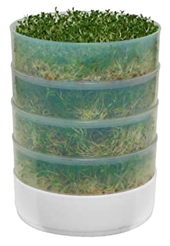 VICTORIO VKP1014 4-Tray Kitchen Seed Sprouter