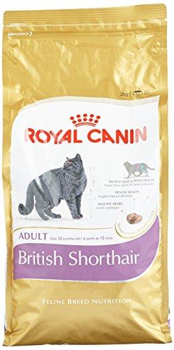 royal-canin-cat-food-british-shorthair-dry-mix-2-kg
