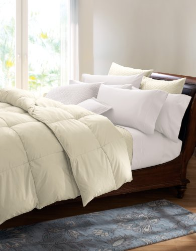 Cuddledown 400tc Colored Down Comforter Queen Summer Ivory
