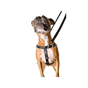 "Freedom No-Pull Dog Harness Training Package - 1"" Width Large Black"
