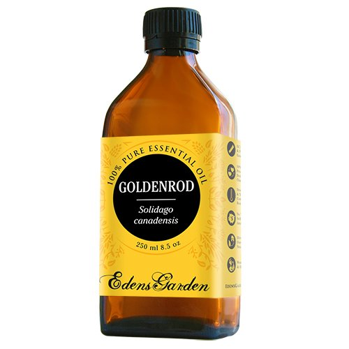 Goldenrod 100% Pure Therapeutic Grade Essential Oil by Edens Garden- 250 ml