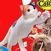 猫キャッチ! 【6.三毛】(単品)