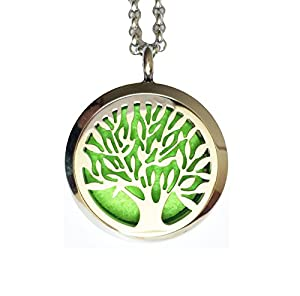 Denee Aromatherapy Essential Oil Diffuser Necklace Jewelry, Hypo-Allergenic 316L Surgical Grade Stainless Steel Locket Pendant with 24