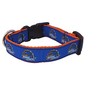 NCAA Boise State Broncos Dog Collar (Team Color, Small)