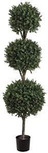 Allstate Floral & Craft Triple Ball Boxwood Topiary Plant, 6-Feet