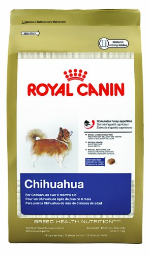 Royal Canin Chihuahua Adult Dry Dog Food 10-lb bag