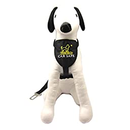 Alfie Pet - Dicky Car Vehicle Safety Seat Belt Harness with Tether - Color: Black, Size: Medium