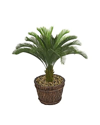 Laura Ashley 56 Cycas Palm Tree in a Planter