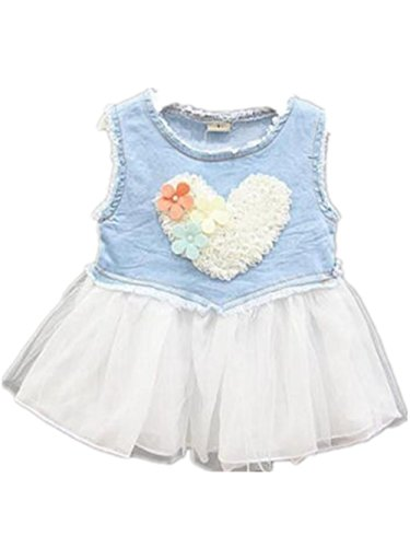 Baby Girls Kids Lace Dress Party Tutu Love Heart Tulle Denim Skirts (2-3 Years, White)