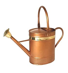 Decorative Copper Oval Watering Can Color
