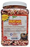 SFB FOOD FRUIT MIX 8.05OZ JAR