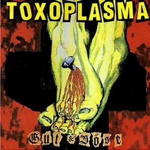 Gut & Bose by Toxoplasma