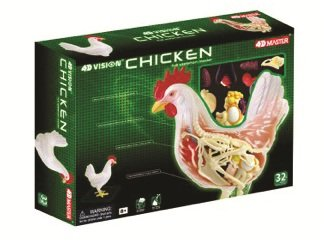 Famemaster 4D Vision Chicken Anatomy Model
