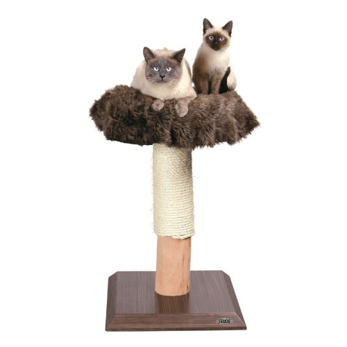 TRIXIE Pet Products Etosha Cat Tree, dark brown